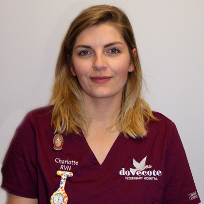 Charlotte Archer, RVN at Dovecote Veterinary Referrals