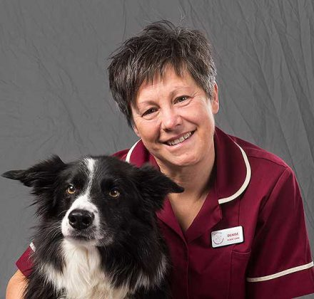 Denise March, client care at Dovecote Veterinary Hospital