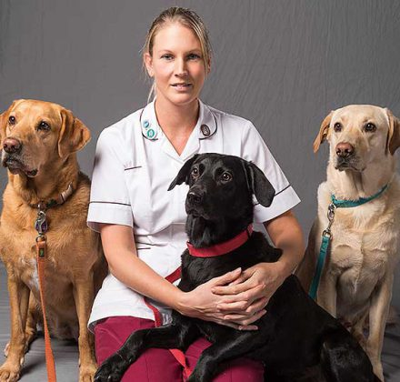 Rachel Lorey, RVN at Dovecote Veterinary Hospital