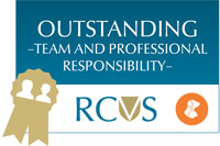 RCVS PSS Award logo - Outstanding team