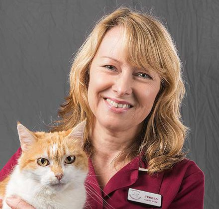 Teresa Jones, client care at Dovecote Veterinary Hospital